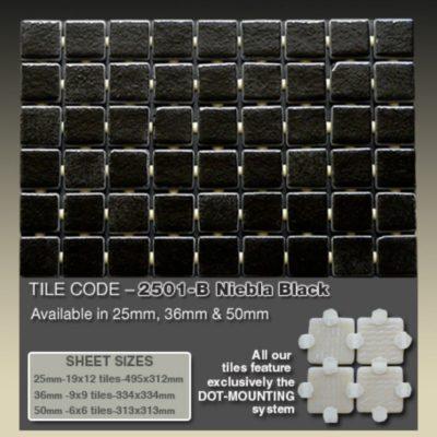 2501 B Niebla Black