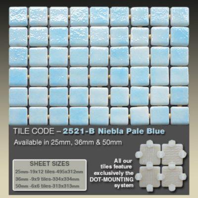 2521 B Niebla Pale Blue